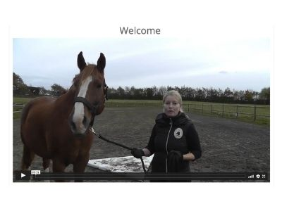 welcome proprio training online horses